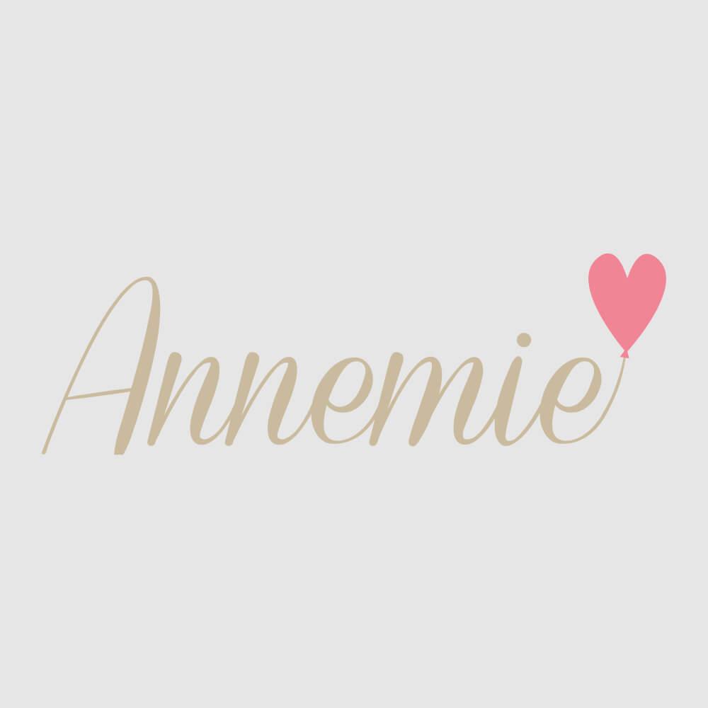 Logo annemie.ch als Kundenreferenz von Bacher PrePress